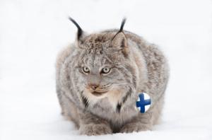 Charakteristický finský rys